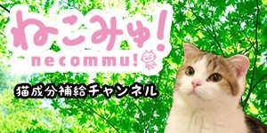 ねこみゅ!猫専門チャンネル